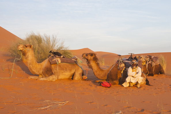 The desert in Morocco