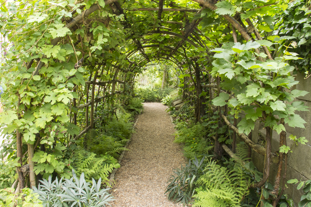 A tunnel arbour in Queen Eleanor's Garden in Winchester, Hampshire, England 60
