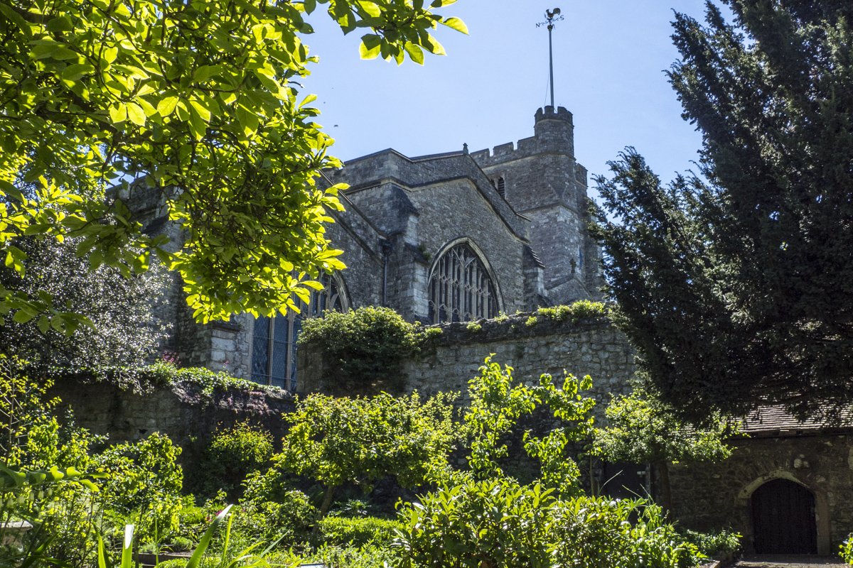 All Saints Chruch from the Garden of the Archbishops' Palace in Maidstone, Kent  5141342