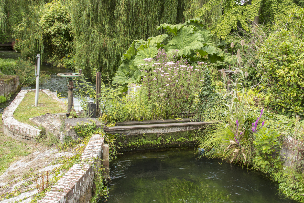An Old Weir in Winchester, Hampshire, England 2368