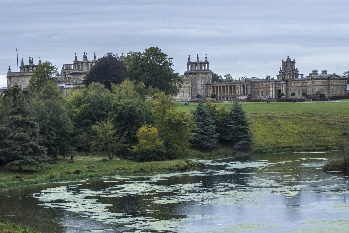 Blenheim Palace in Woodstock   9301720