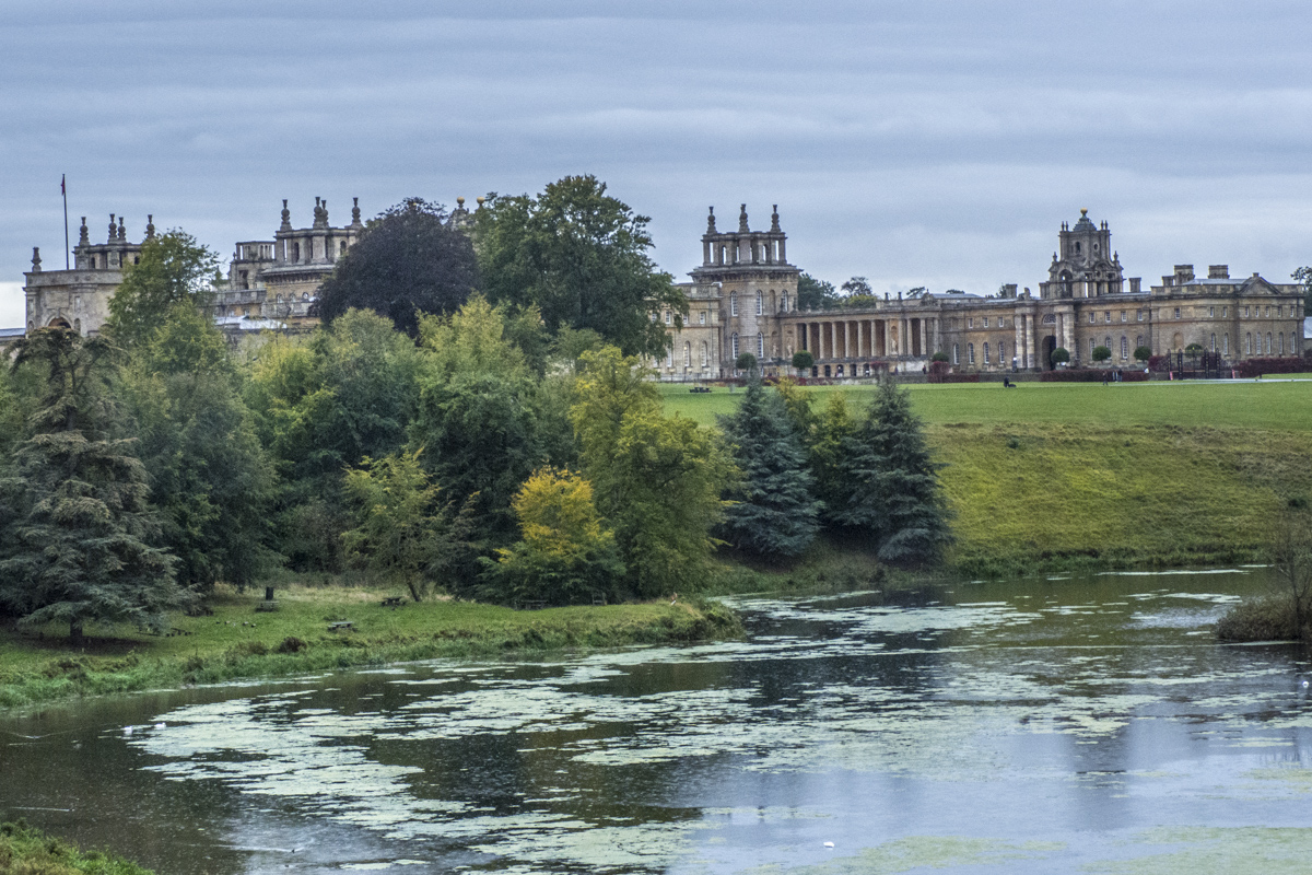 Blenheim Palace in Woodstock, Oxfordshire  9301720