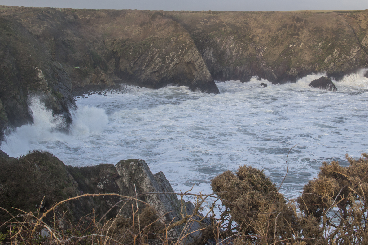 Caerfai Bay in St David's, Pembrokeshire in Wales    6079