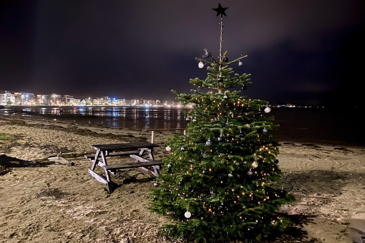 Christmas Tree next to Poole Harbour in Dorset