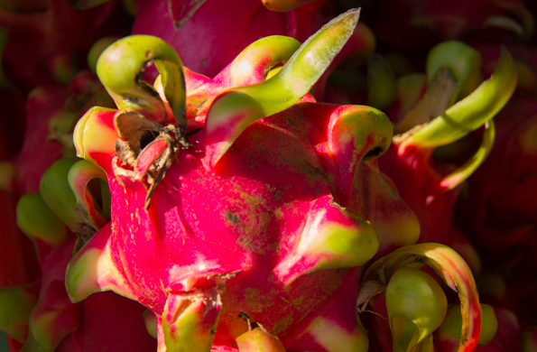 Dragon fruit for sale in the Ben Thanh Market in Ho Chi Minh City in Vietnam