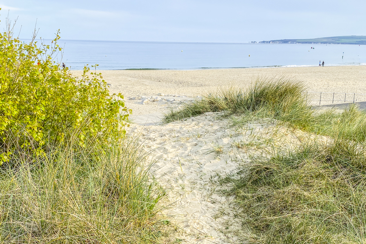 Dunes Fringing Sandbanks Beach  5875