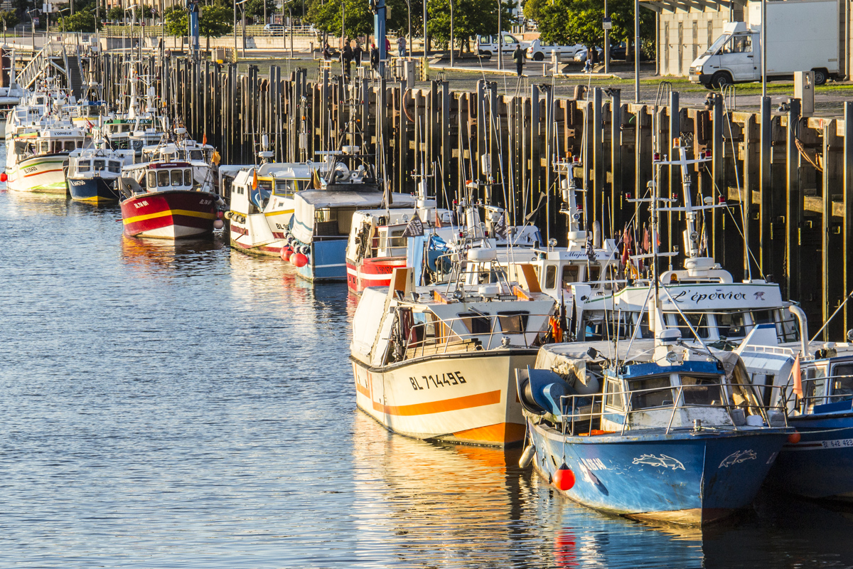 Fishing boats in the port of Boulogne sur Mer, France 0097