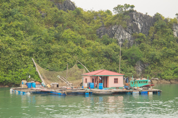 Floating fish farm in Halong Bay in Vietnam