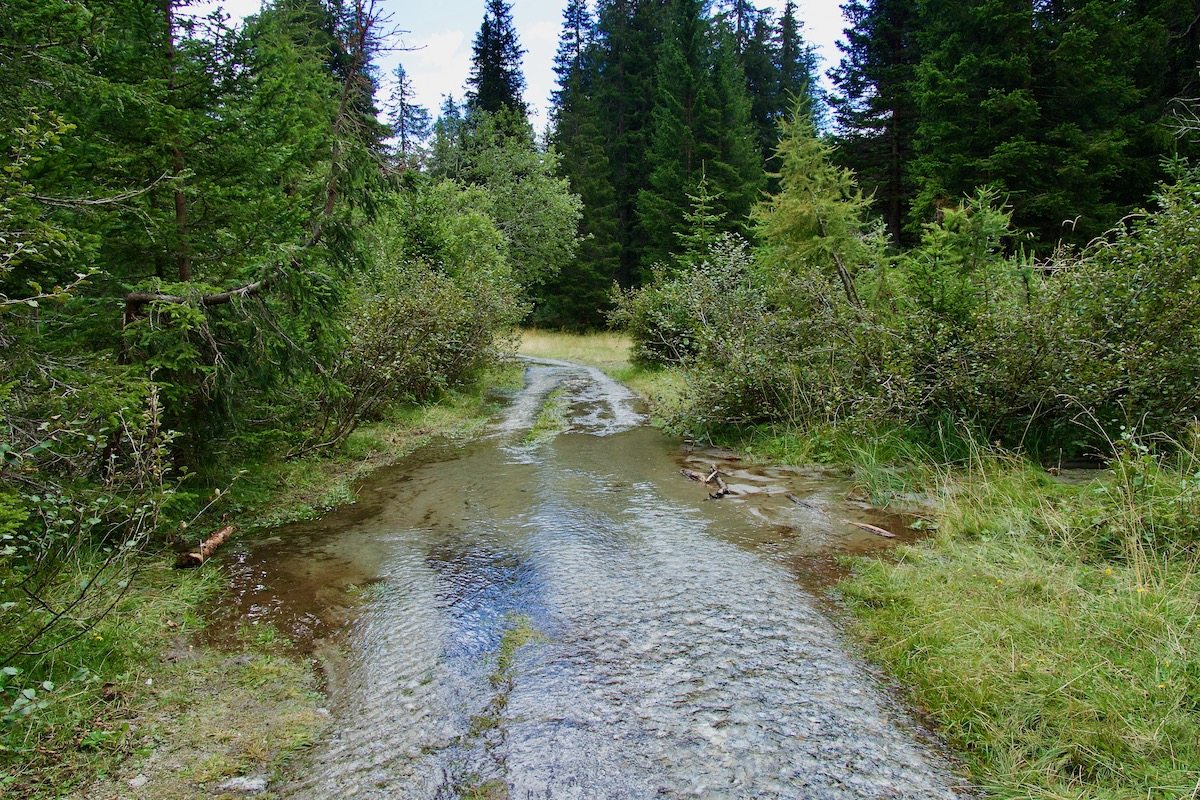 Flooded Path in Madonna di Campiglio, Italy