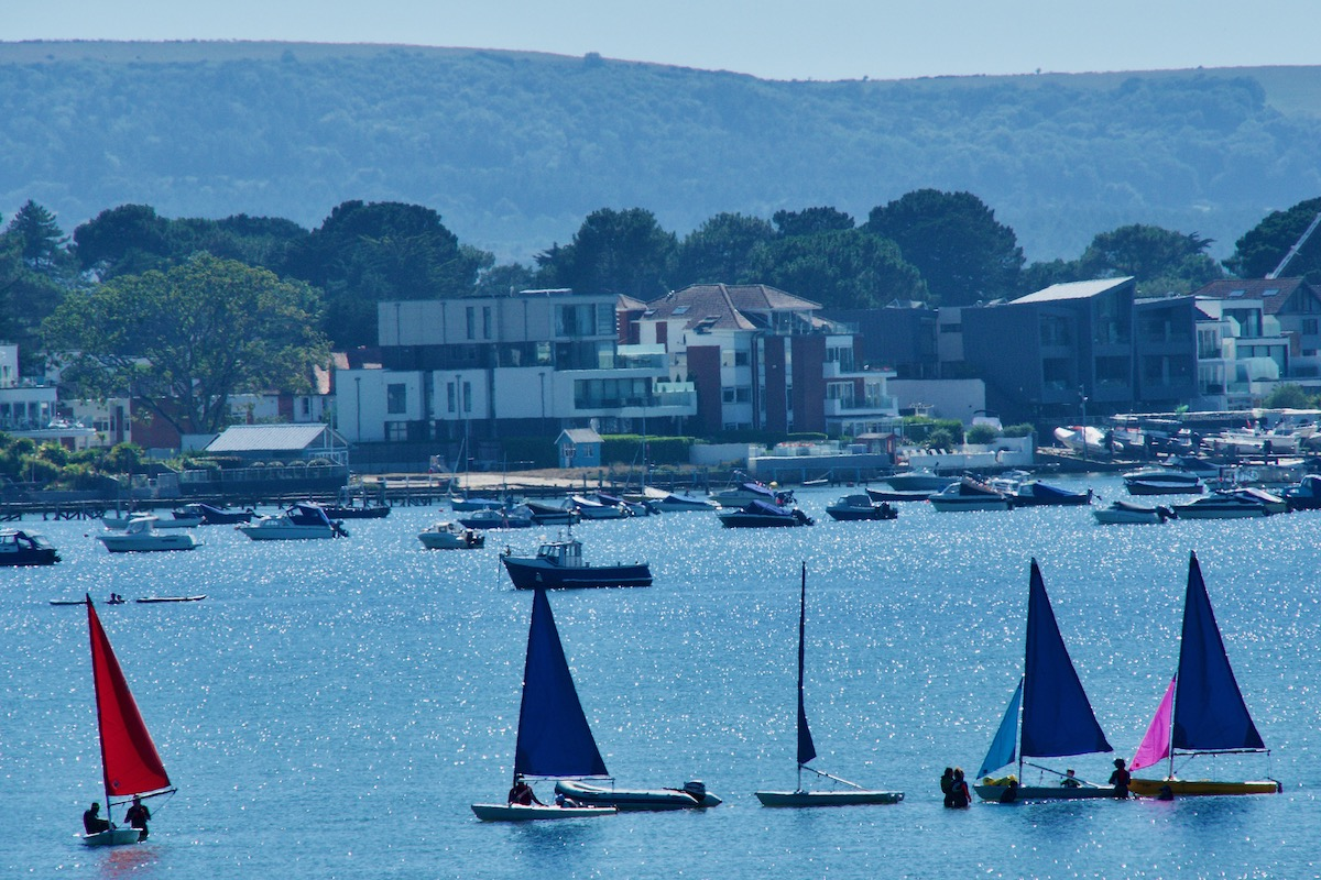 Flotilla of Sailboats in Poole Harbour, Dorset