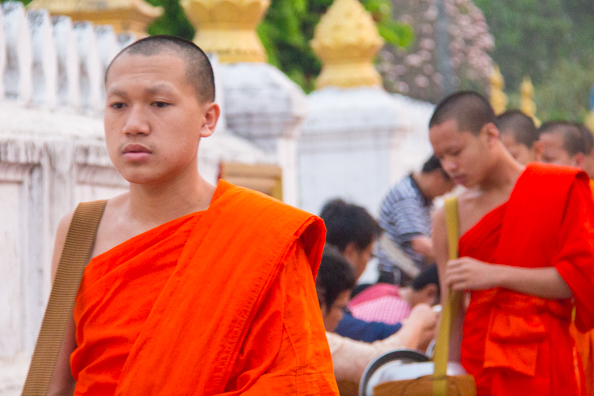 Giving alms to the monks of Luang Prabang in   Laos