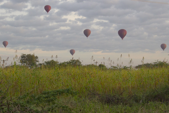 Hot air balloons takking off overf Bagan in Myanmar