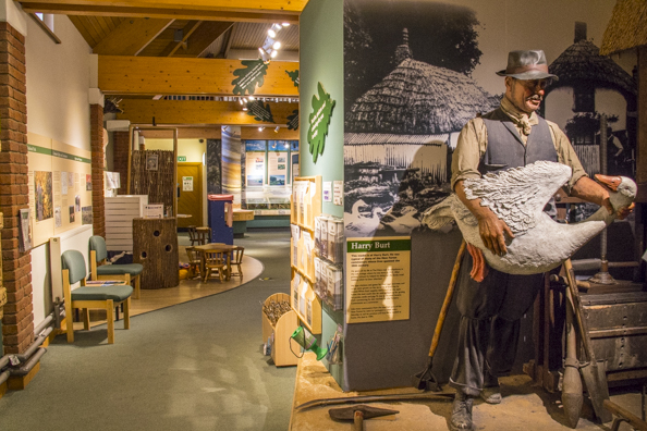 Inside the New Forest Museum in Lyndhurst in the New Forest. England