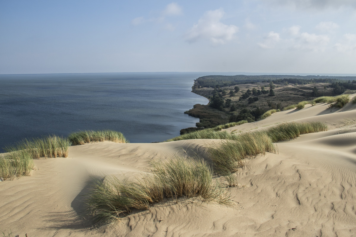 Nagliai Strict Nature Reserve on the Curonian Spit Lithuania  0105