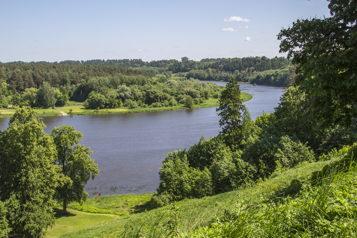 Nemunas River from Vytautas Hill in Birštonas Lithuania  7864