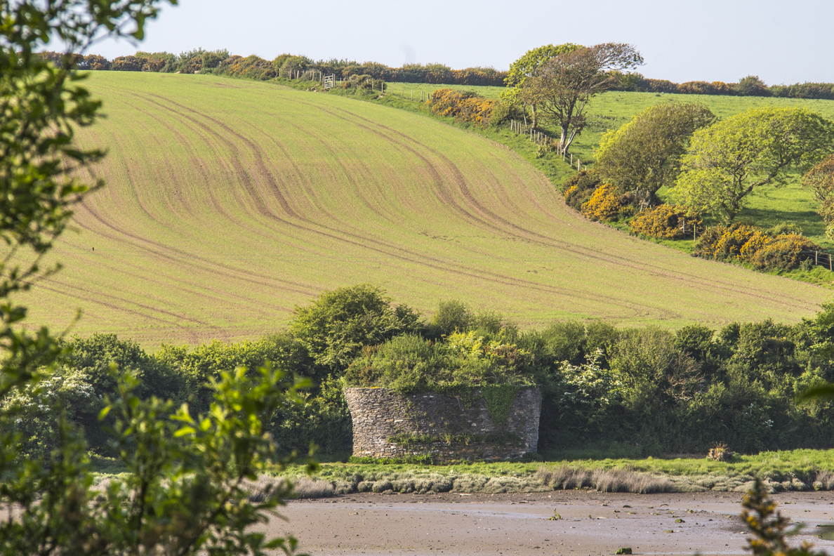 Old lime kiln on the River Nerne in Newport, Pembrokeshire, Wales   8564