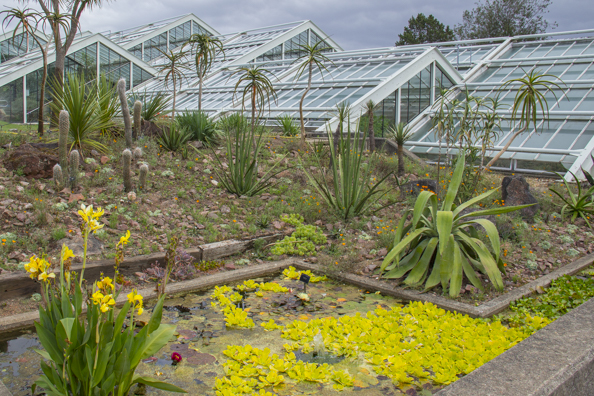 Outside the Princess of Wales Conservatory at Kew Gardens in London