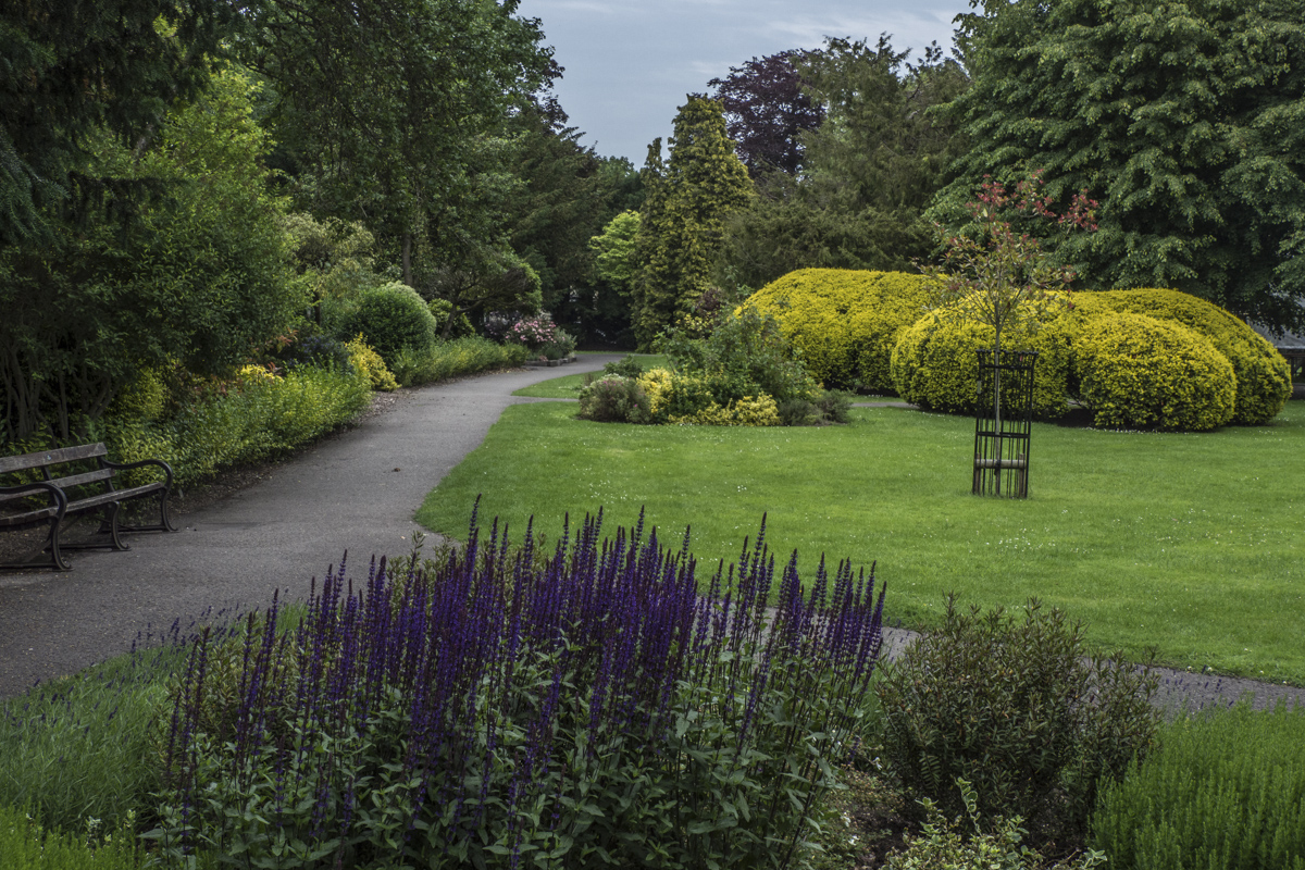 Pageant Gardens in Sherborne, Dorset 6240194