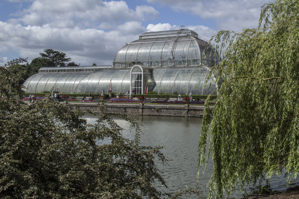 Palm Court and the Pond at Kew Gardens 2116