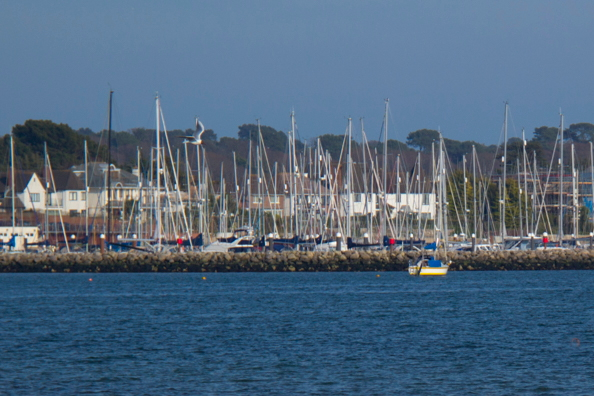 Parkstone Yacht Club on Parkstone Bay in Poole Harbour