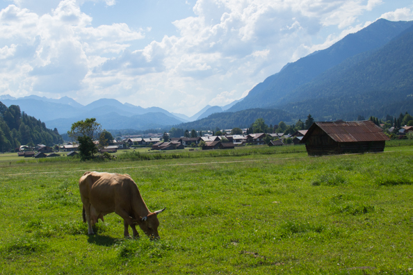 Pastures around Garmisxh-Partenkirchen in Bavaria