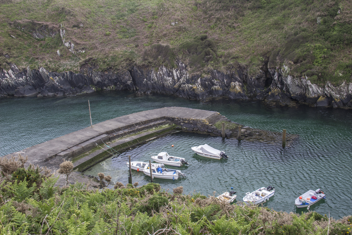 Porthclais Harbour on St David's Peninsula in Pembrokeshire, Wales   9191