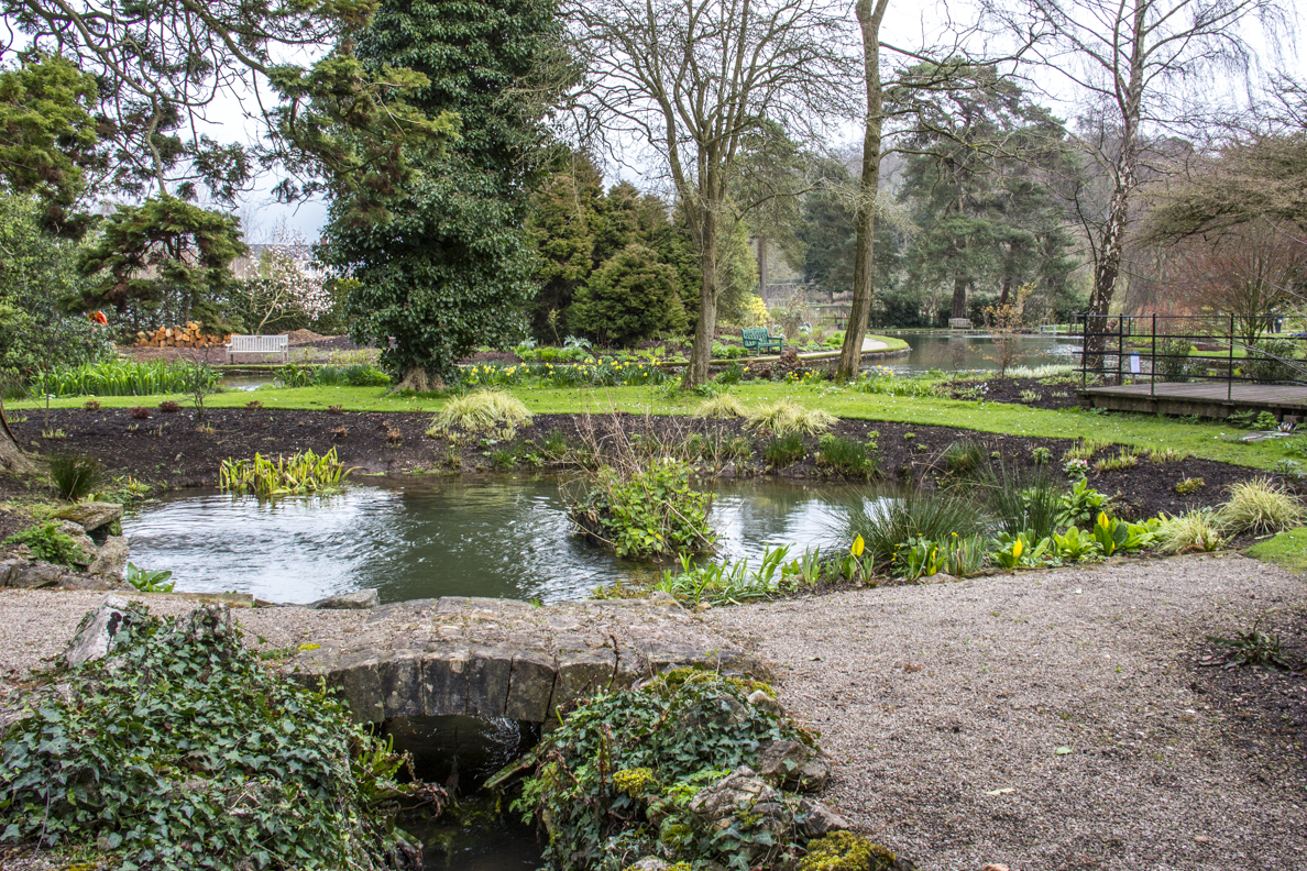 Saint Andrews Wells in the grounds of the Bishop's Palace in Wells, Somerset, England   20185384