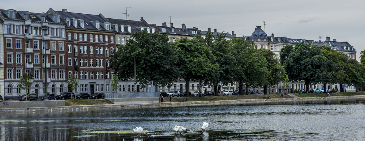 A Walk Through the Open Spaces of Østerbro in Copenhagen