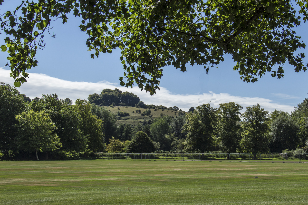 St Catherine's Hill behind Winchester College Cricket ground in Winchester 2345