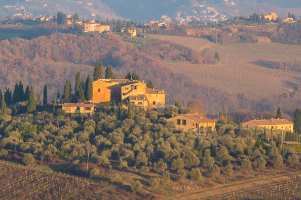 Sun-kissed landscape around San Gimignano, Tuscany Italy