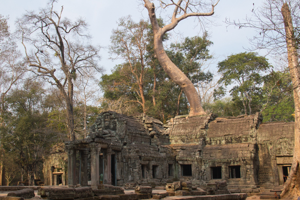 a Prohm at Angkor Thom in Siem Reap, Cambodia
