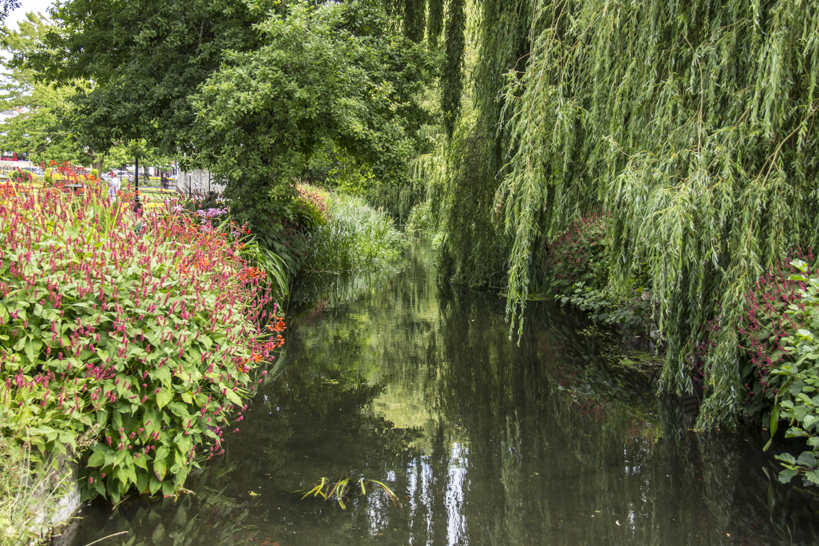 The Abbey Mill Stream in the Abbey Mill Gardens of Winchester, Hampshire, England  2401