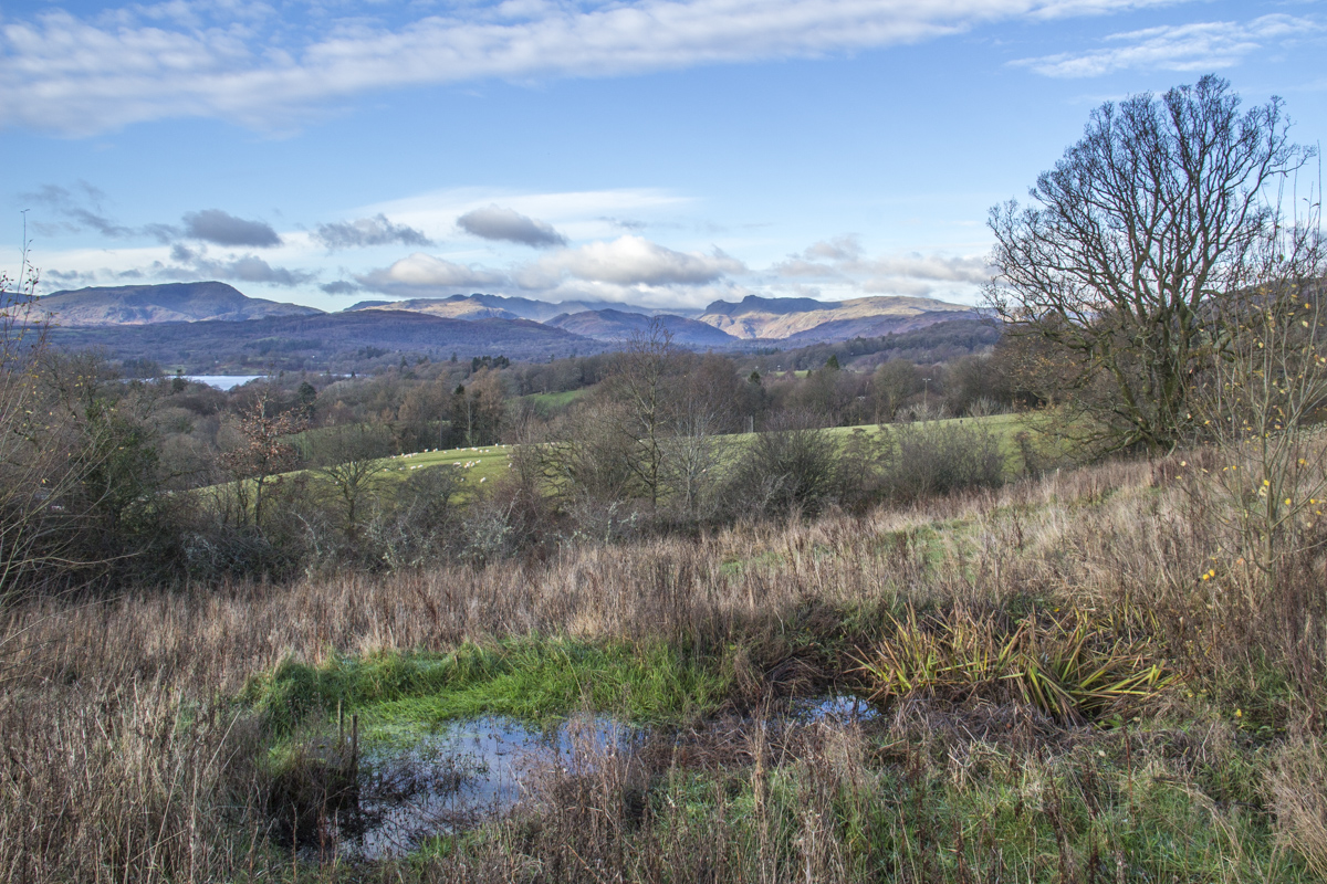 The Countryside Surrounding Windermere in Cumbria, UK100