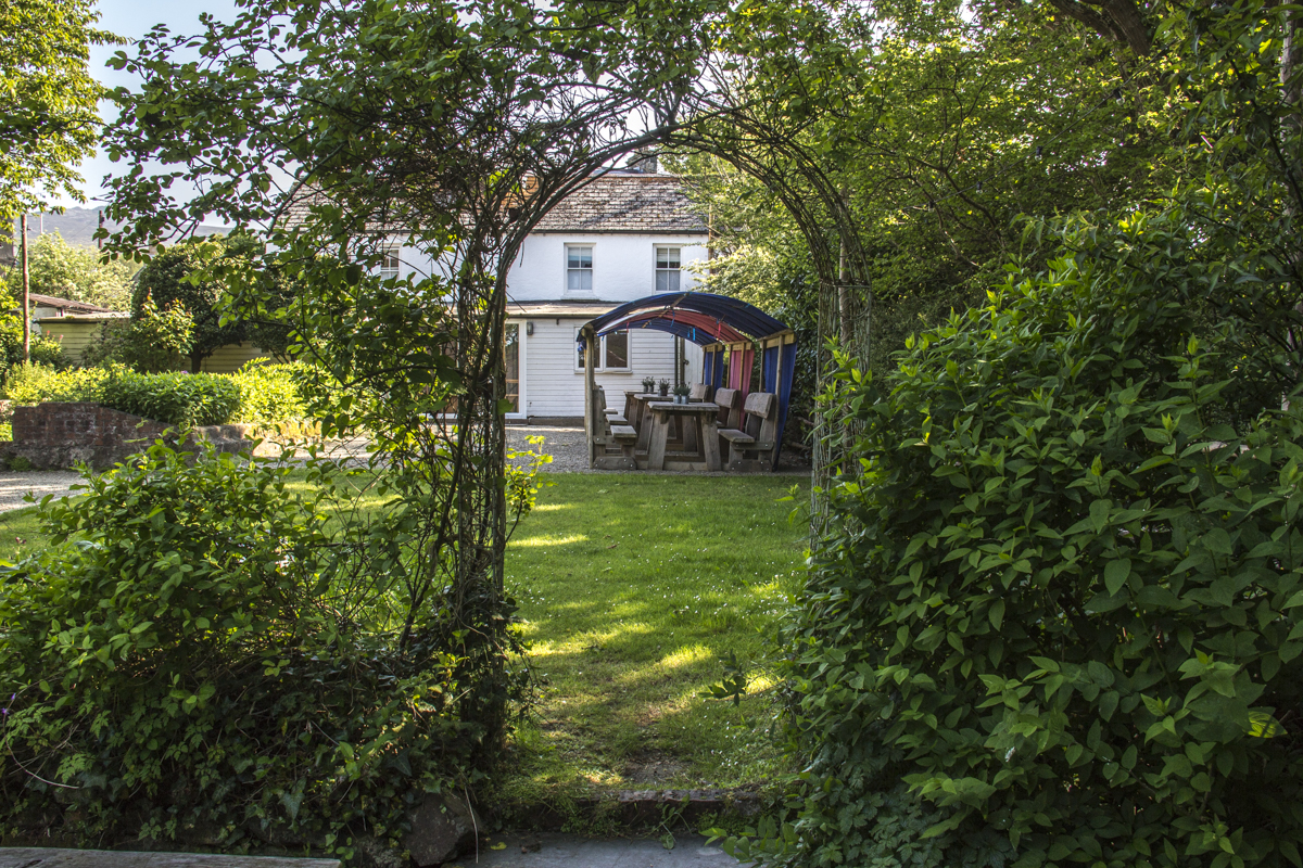 The garden at Llys Meddyg in Newport, Pembrokeshire, Wales   8527