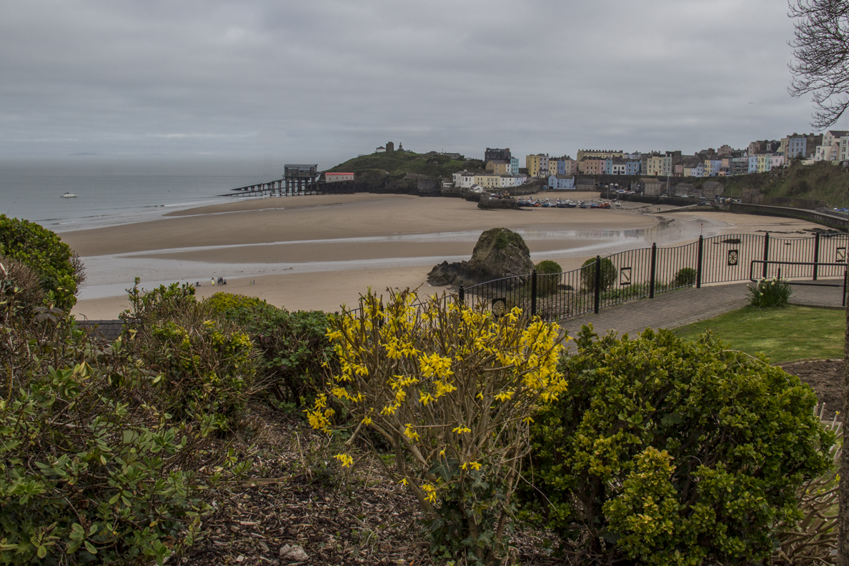 The gardens on The Croft in Tenby in Pembrokeshire, Wales  6420