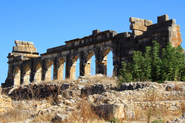 The Roman ruins at Volubilis Morocco