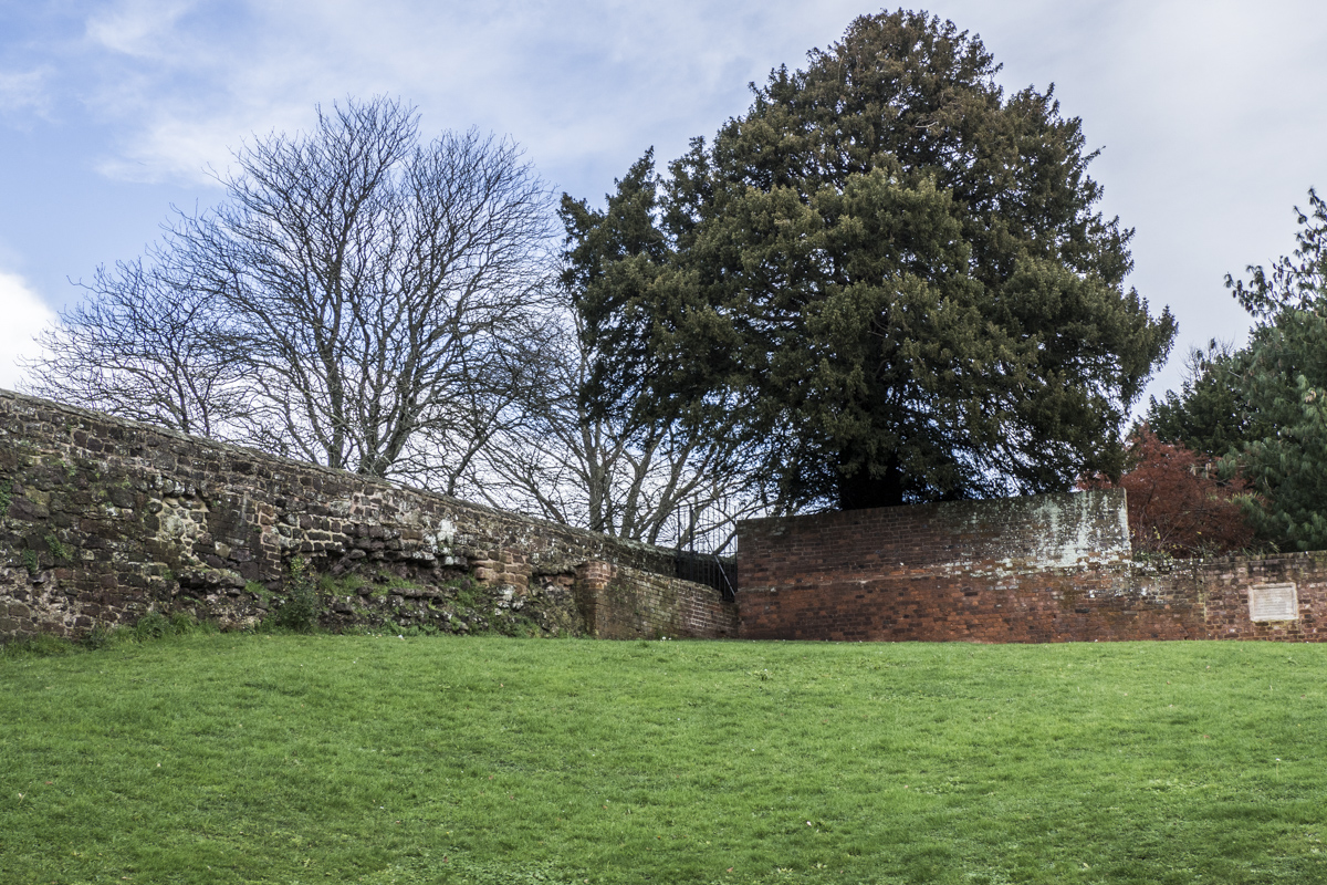 The Roman Walls of Exeter in Devon 060284