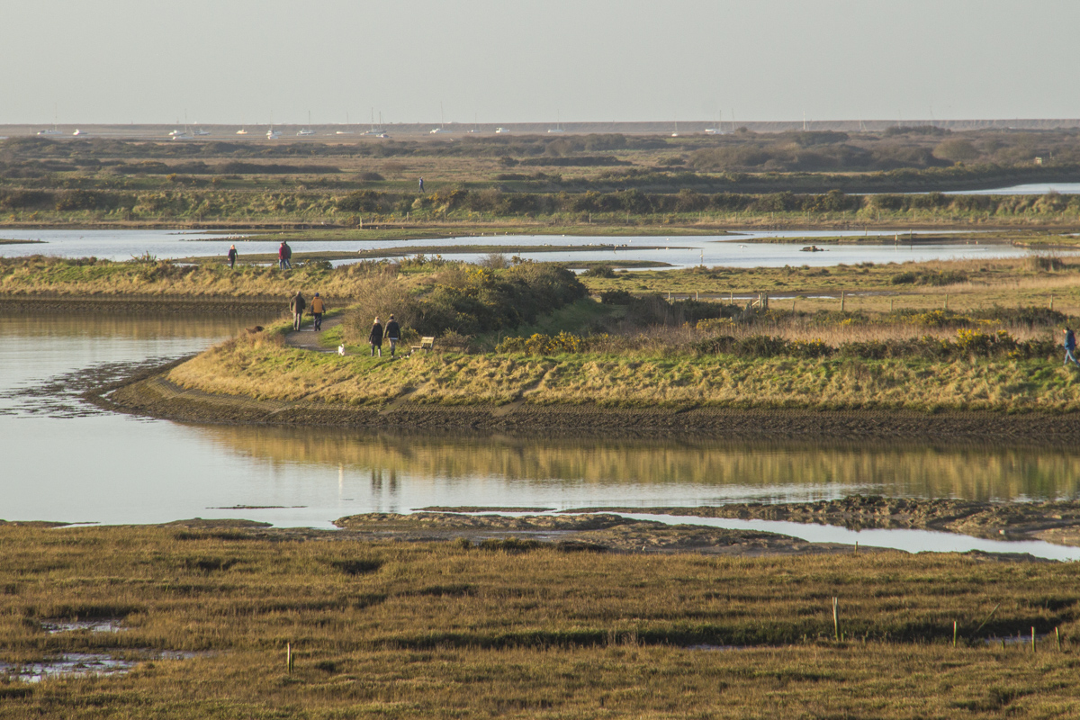 The Salt Marshes at Lymington in Hampshire, UK  3800
