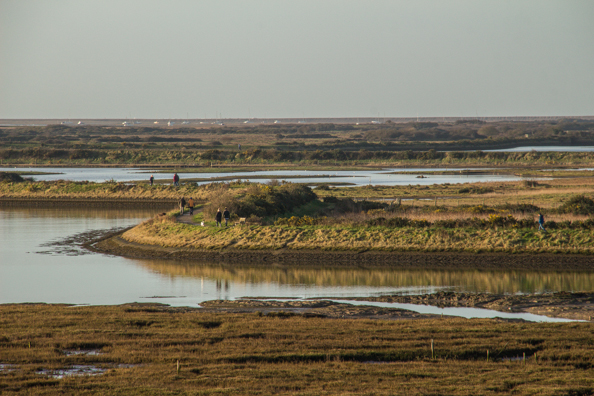 The Salt Marshes in Lymington, New Forest, Hampshire, UK