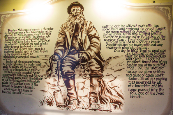 The story of the Snakecatcher on the wall of the Snakecatcher Pub in Brockenhurst, New Forest