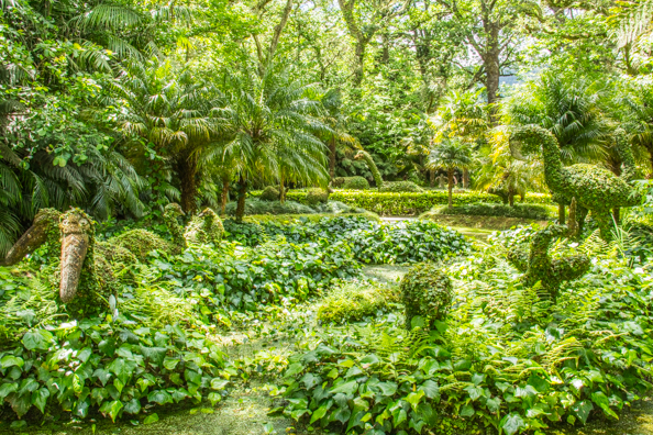 The Terra Nostra Garden in the Furnas Valley on São Miguel Island in the Azores