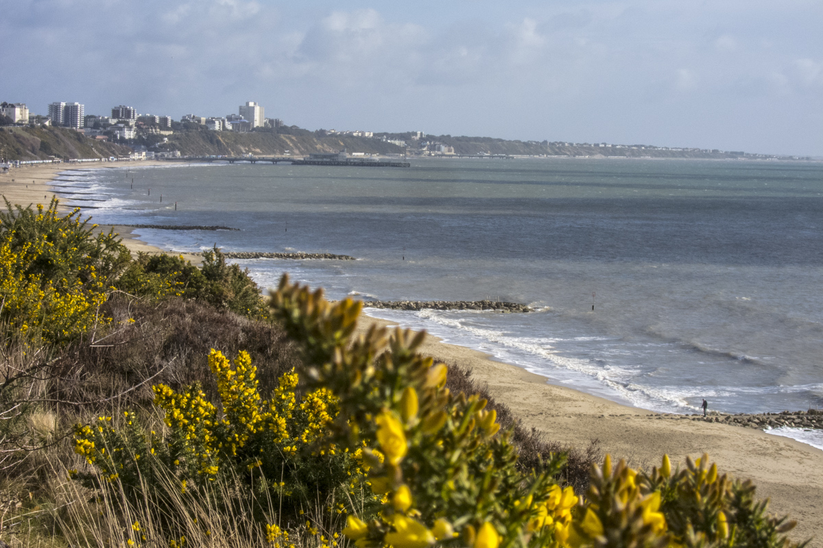 The View from Canford Cliffs above Bournemouth Beach    6469