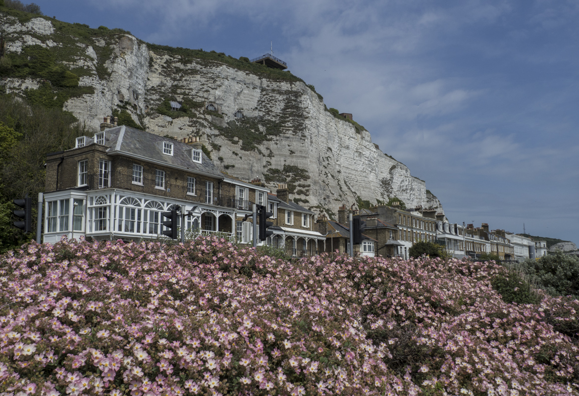 The White Cliffs of Dover in Dover, Kent 5070688