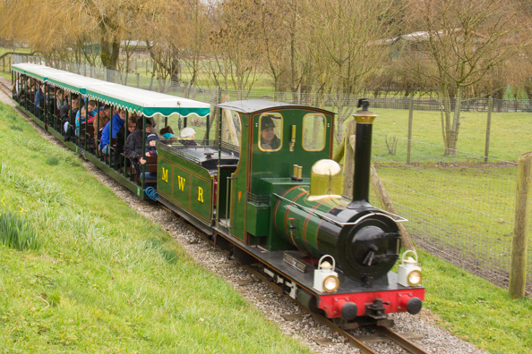 Train at Marwell Zoo in Hampshire
