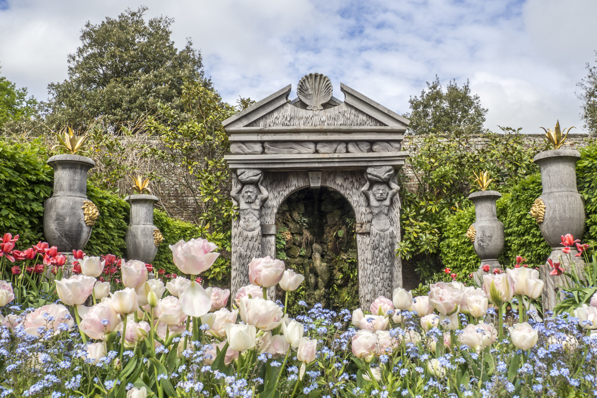 Tulips in the Gardens at Arundel Castle, Arundel in West Sussex  4243147