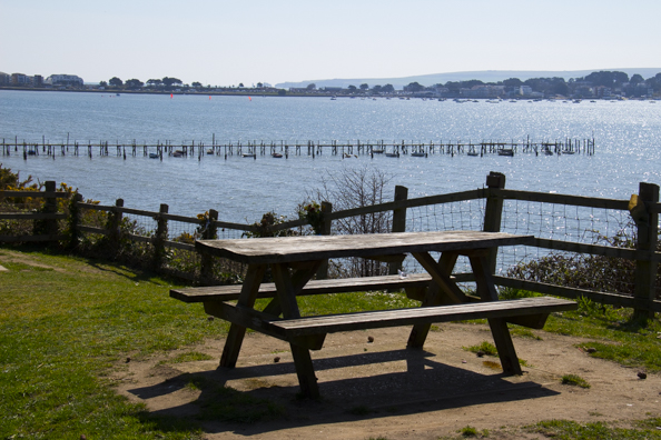 View from Evening Hill  in Poole Harbour-7657