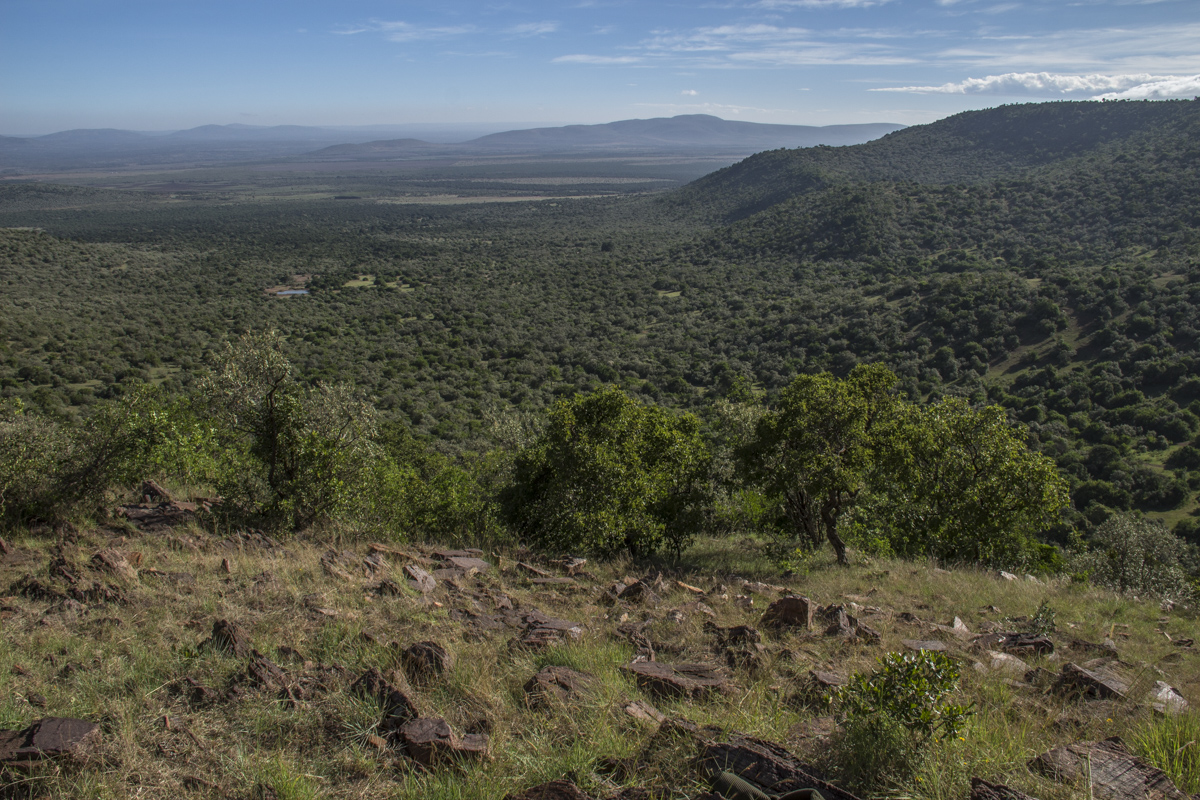 View from the Observation Point on Kileoni Hill in the Enonkishu Conservancy, Kenya  0068