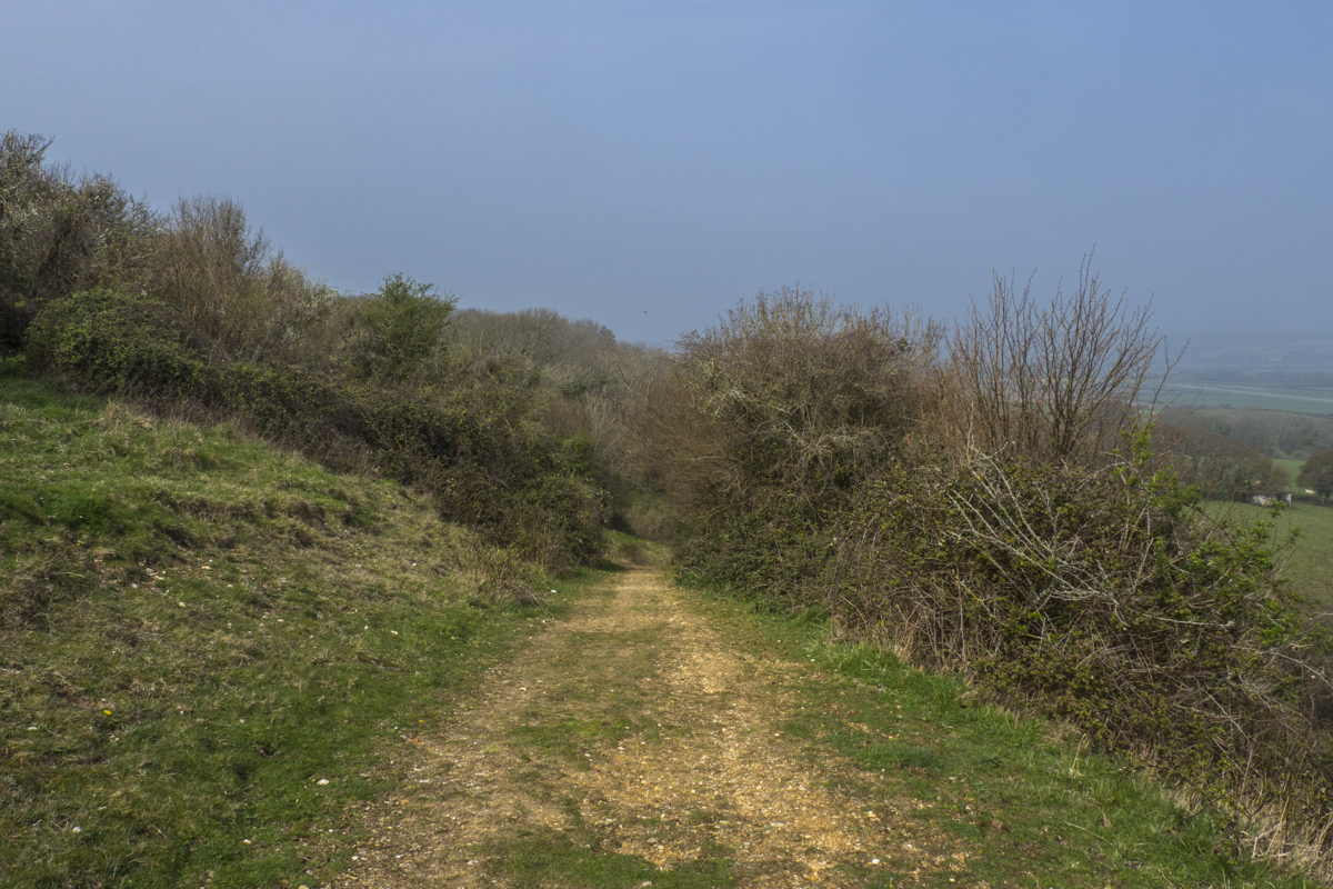 Walking on Culver Down on the Isle of Wight 4071175